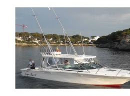 Vendo sea ray 310 sportfisher